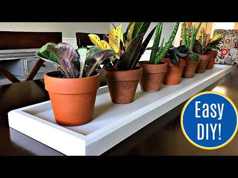 How to Make A Long Wood Tray - Easy Build Plan Steps for Beginner Woodworkers