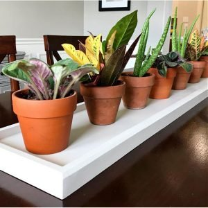 Build steps and how-to video for this easy DIY Long Wooden Table Runner Tray. Makes a beautiful table centerpiece that beginner woodworkers can build. How to build a DIY Wood Table Top Tray for plants or other decor.