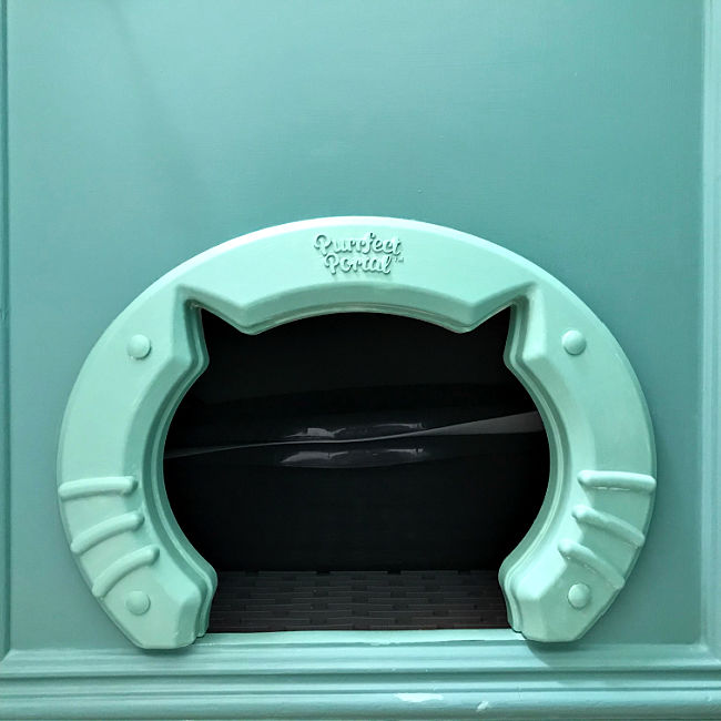 6 GREAT ways to Hide a Kitty Litter Box in a Cabinet. 4 are minor changes safe for rental properties. All of them are perfect for cat lovers!