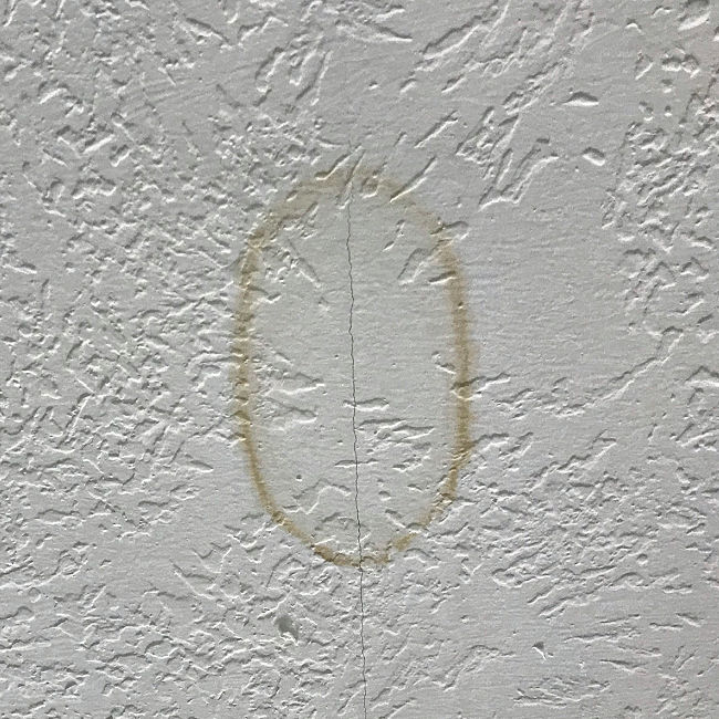 Drop the paint brush, guys. There's an easier way to get rig of ugly water stains. Here's How to Remove Water Stain from Ceiling Without Painting! How to Safely Use Bleach to Remove Brown Water Stains or Water Rings on drywall, plaster, or ceiling tiles..